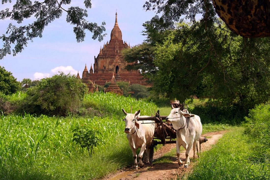 Introduction to doing business in Myanmar